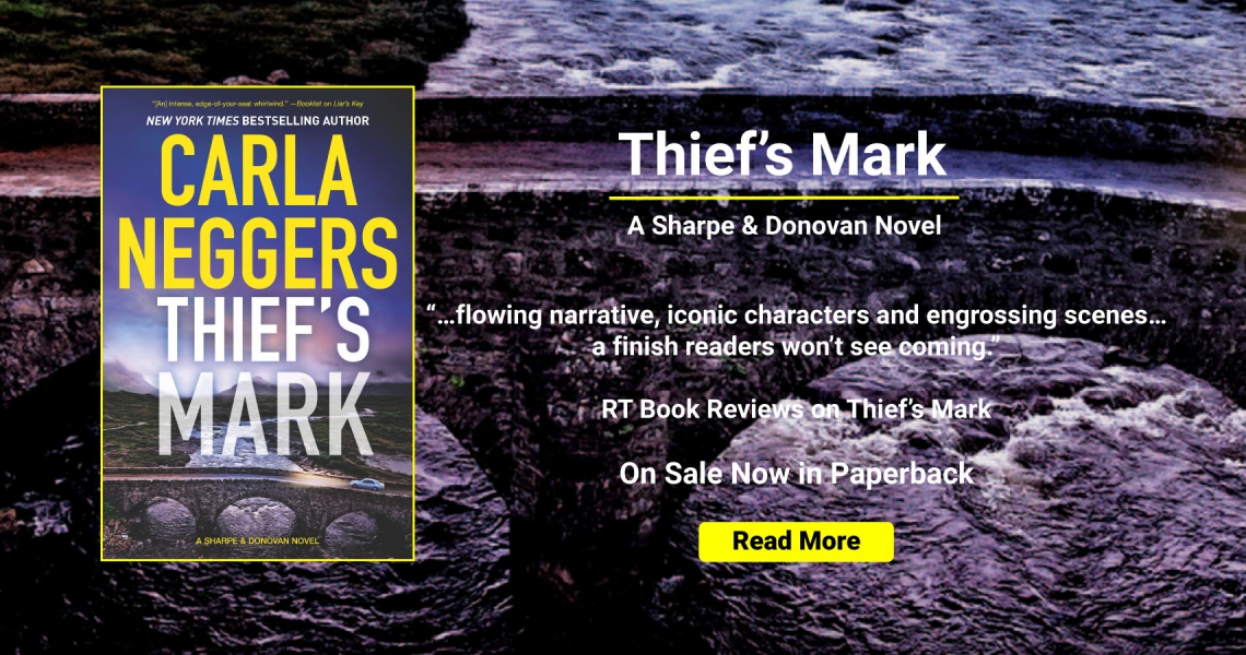 Thief's Mark Now on Sale in Paperback